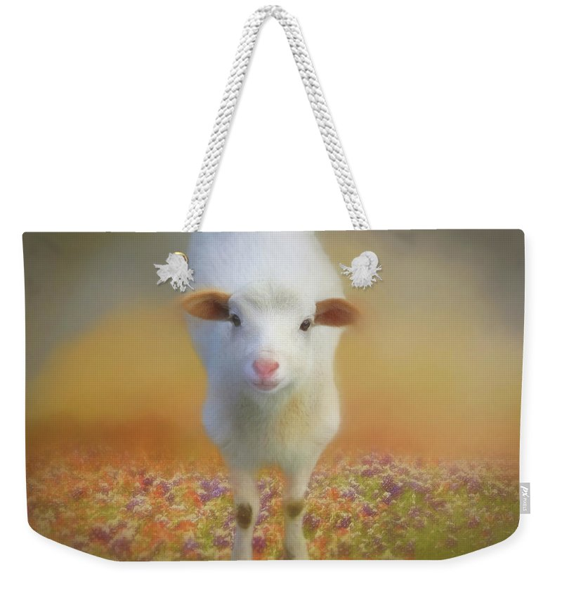 Sheep Weekender Tote Bag featuring the photograph Dirty Knees by Donna Kennedy