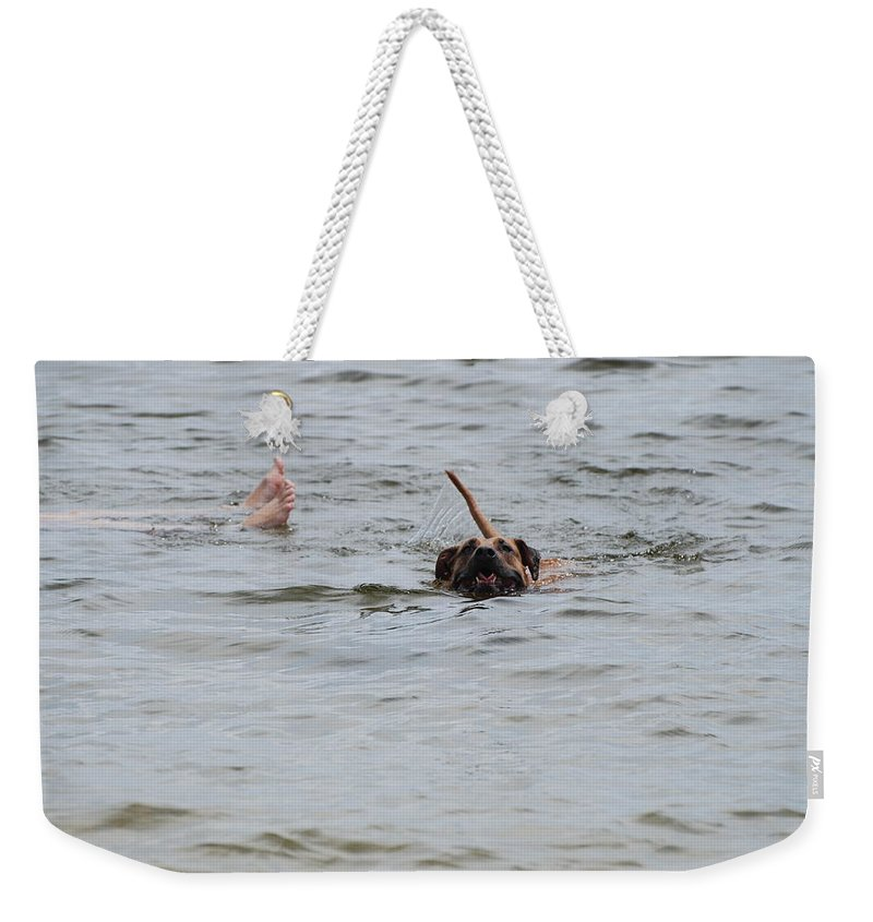 Feet Weekender Tote Bag featuring the photograph Dirty Water Dog And Feet by Rob Hans