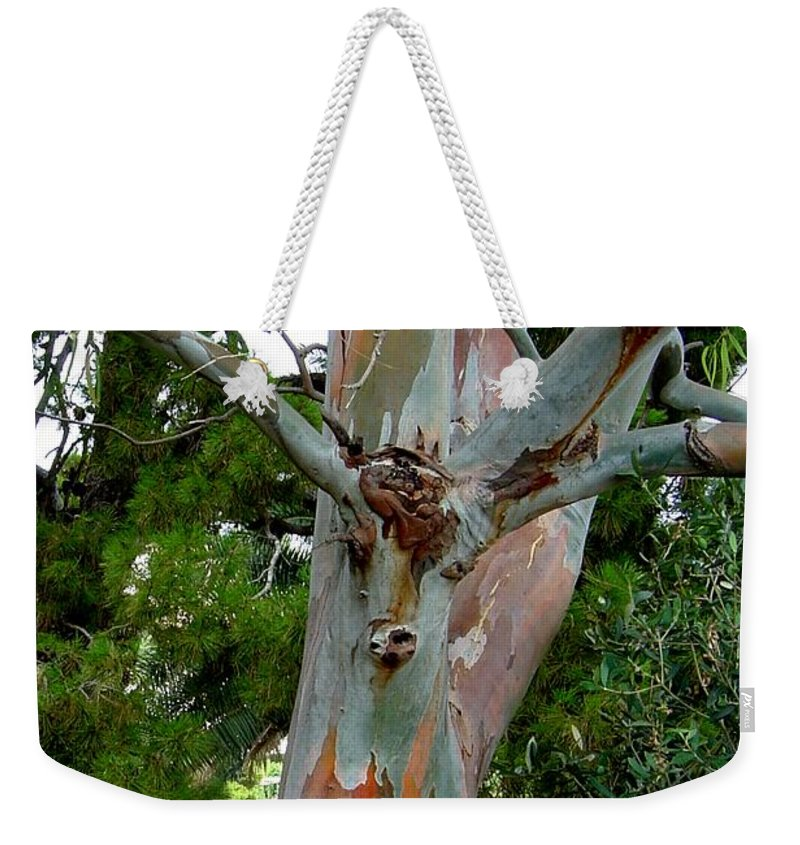 Deer Weekender Tote Bag featuring the photograph Do You See What I See by Joanne Smoley