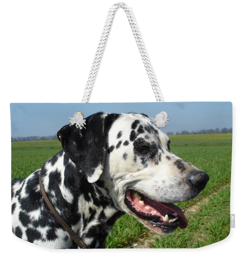 Dog Weekender Tote Bag featuring the photograph Dodgy The Dalmation by Susan Baker
