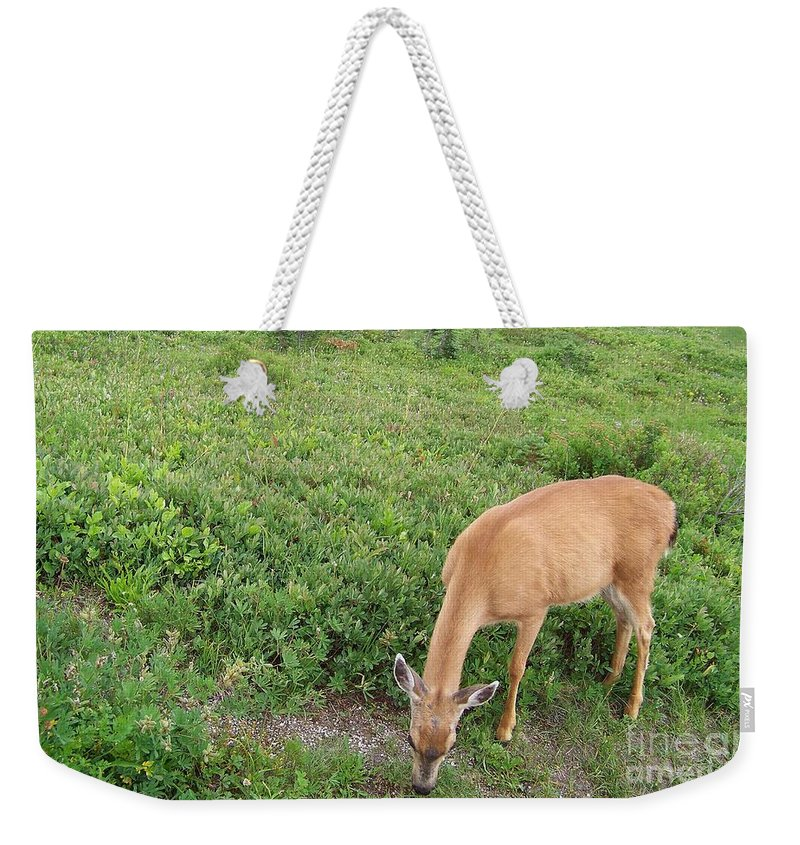 Deer Weekender Tote Bag featuring the photograph Doe by Charles Robinson