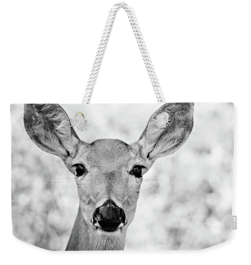 Deer Weekender Tote Bag featuring the photograph Doe Eyes - Bw by Lana Trussell