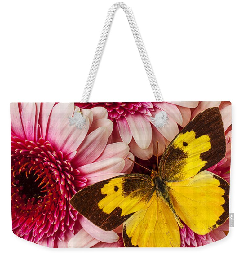 Dog Face Butterfly Butterflies Weekender Tote Bag featuring the photograph Dog Face Butterfly On Pink Mums by Garry Gay