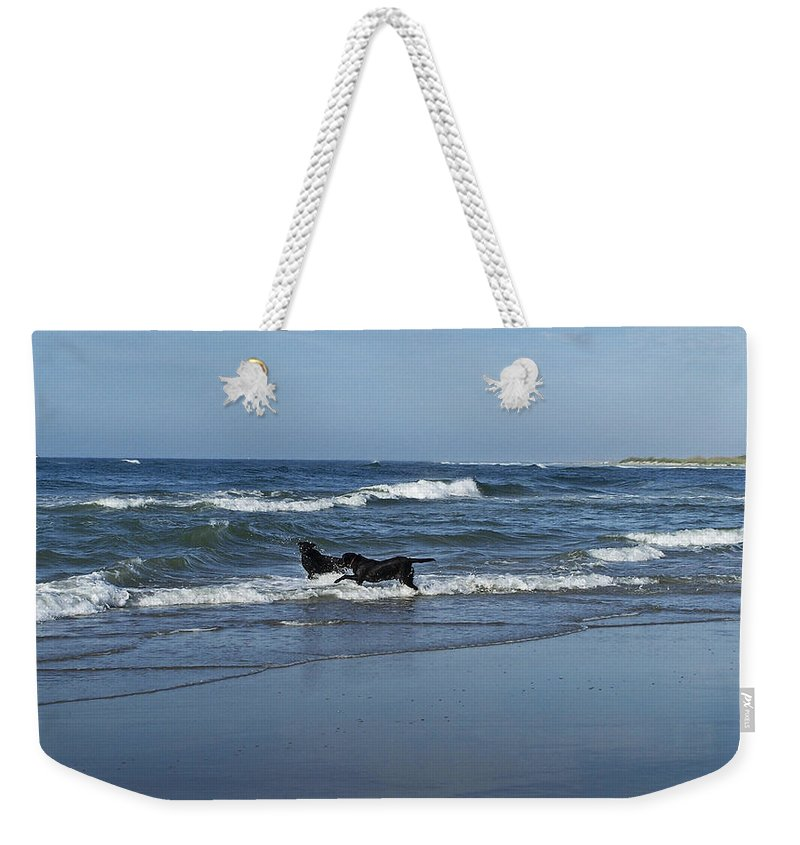 Dog Weekender Tote Bag featuring the photograph Dogs In The Surf by Teresa Mucha