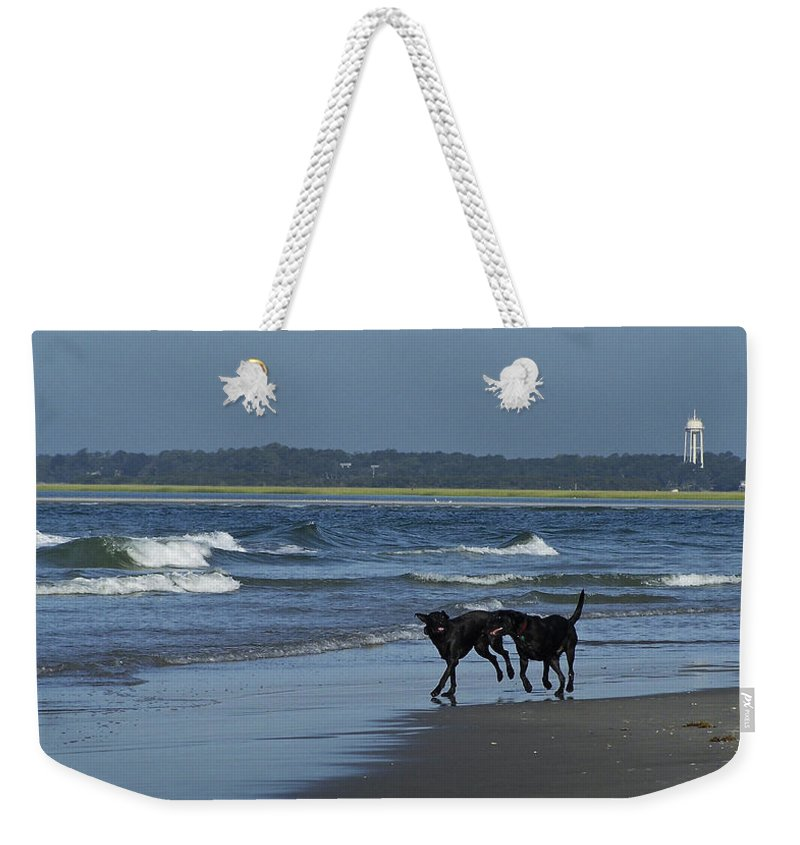 Dog Weekender Tote Bag featuring the photograph Dogs On The Beach by Teresa Mucha