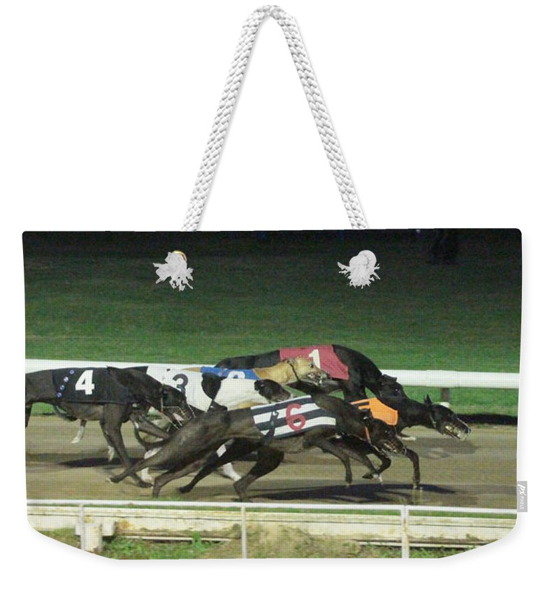 Dogs Weekender Tote Bag featuring the photograph Dogs Racing by Tom Conway