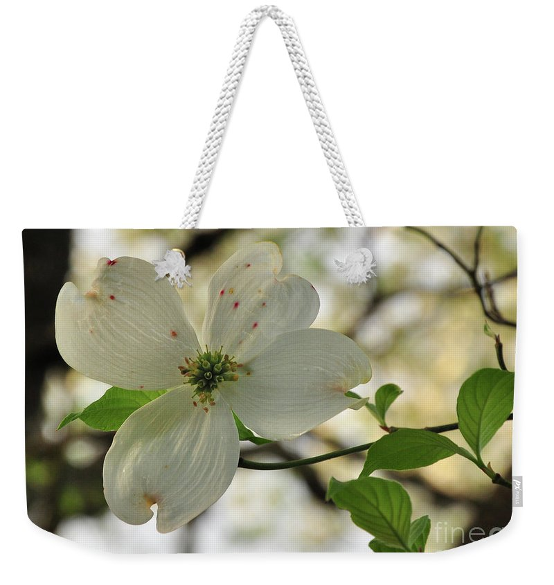 White Weekender Tote Bag featuring the photograph Dogwood Bloom by Susan Cliett