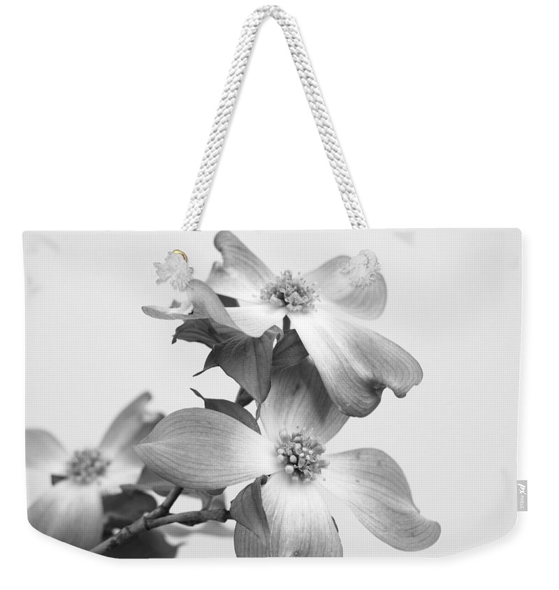 Dogwood Weekender Tote Bag featuring the photograph Dogwood Bloom by Todd Hostetter