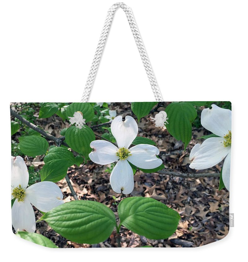 Dogwood Weekender Tote Bag featuring the photograph Dogwood Blossoms by James Pinkerton