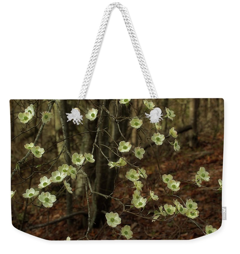 Dogwood Weekender Tote Bag featuring the photograph Dogwoods In The Spring by Mike Eingle