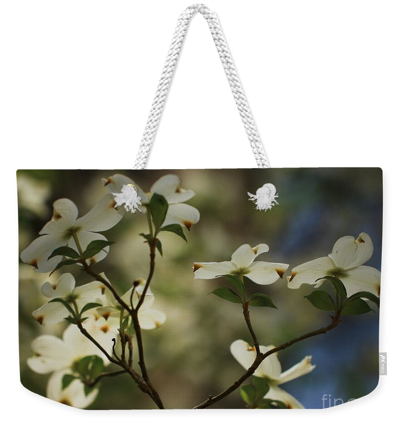 Spring Flowers Weekender Tote Bag featuring the photograph Dogwoods by Kim Henderson