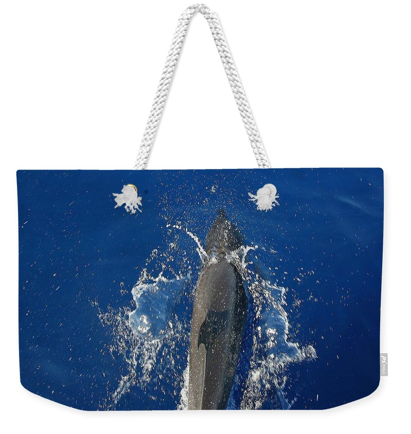 Dolphin Weekender Tote Bag featuring the photograph Dolphin by J R Seymour