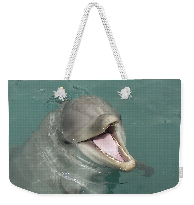 Dolphin Weekender Tote Bag featuring the painting Dolphin by Sean M