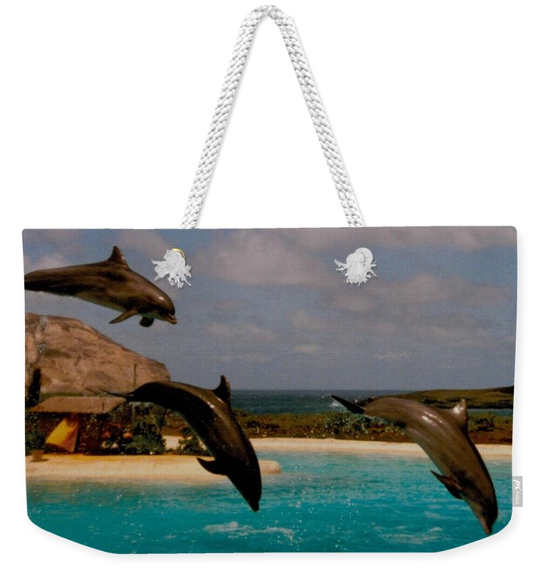 Dolphins Weekender Tote Bag featuring the photograph Dolphins Fly by Michael Bergman