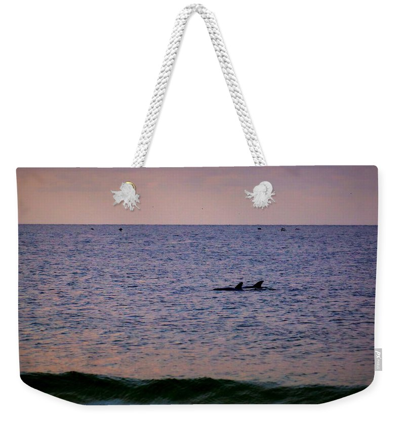 Dolphins Weekender Tote Bag featuring the photograph Dolphins by Paul Wilford