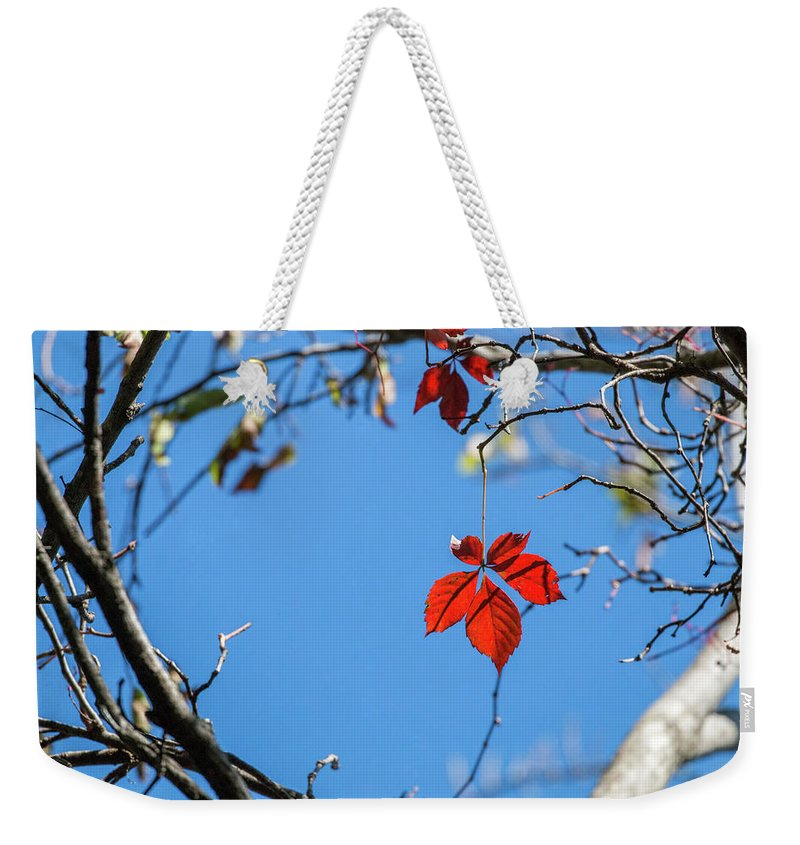 Red Weekender Tote Bag featuring the photograph Domination by Deb Buchanan
