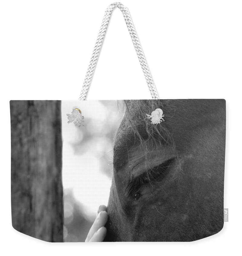 Horse Weekender Tote Bag featuring the photograph Don't Be Afraid by Donna Blackhall