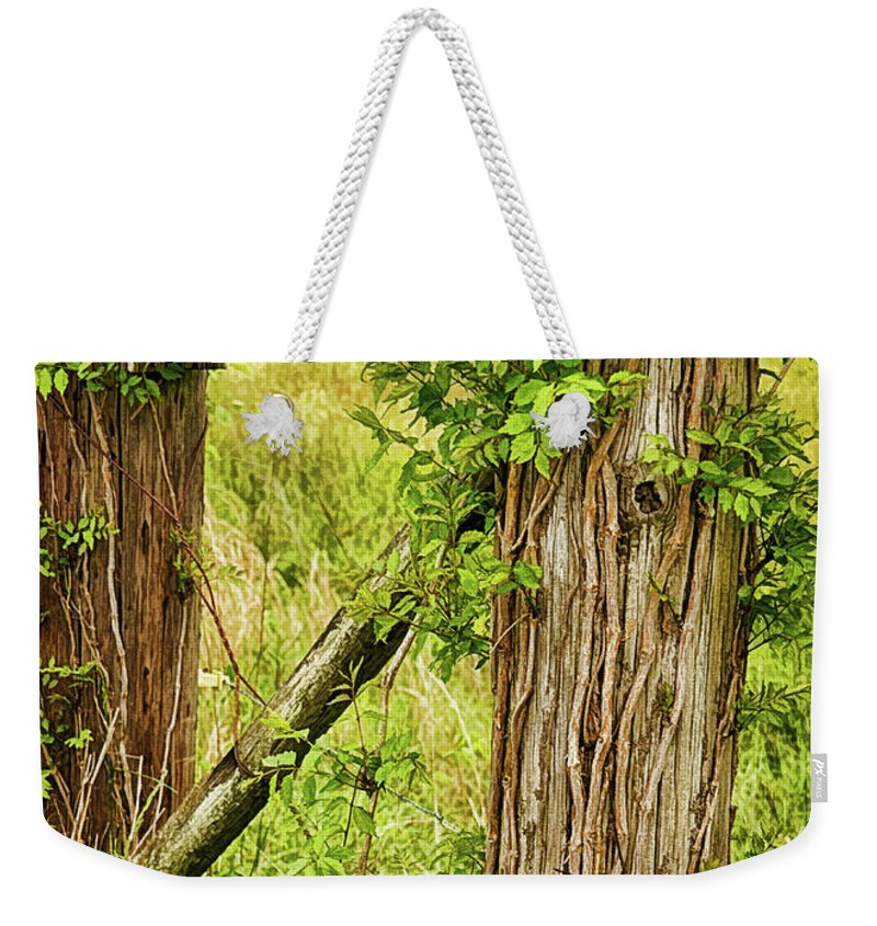 Birdhouse Weekender Tote Bag featuring the photograph Don't Fence Me In by Priscilla Burgers