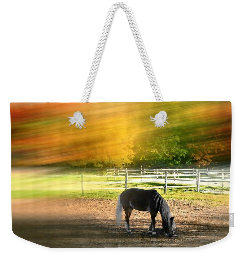 Farm Weekender Tote Bag featuring the photograph It's Where You Find It by Diana Angstadt