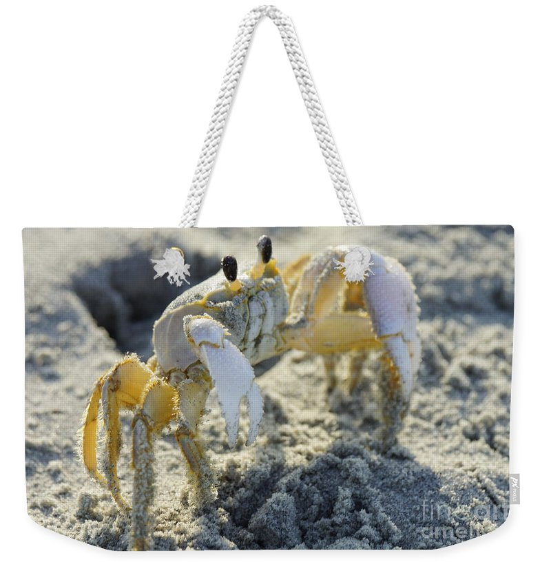 Animal Weekender Tote Bag featuring the photograph Don't Mess With The Crab by Jennifer White