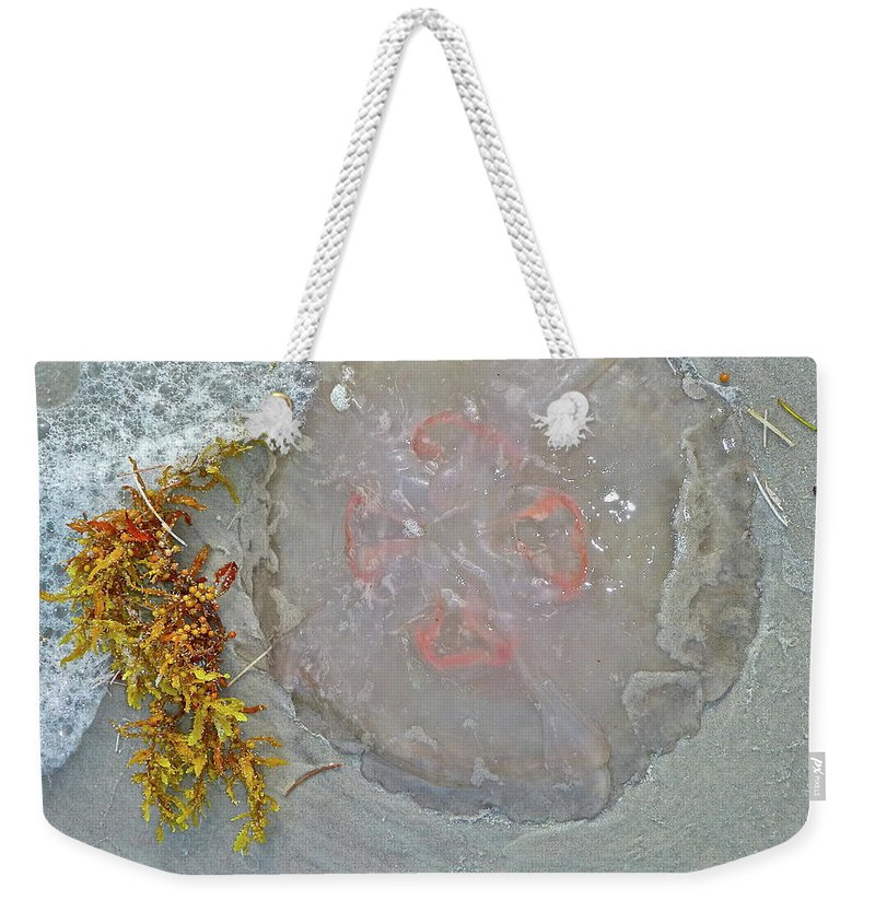 Jellyfish Weekender Tote Bag featuring the photograph Don't Touch by Diana Hatcher