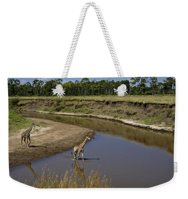 Africa Weekender Tote Bag featuring the photograph Double Crossing by Michele Burgess