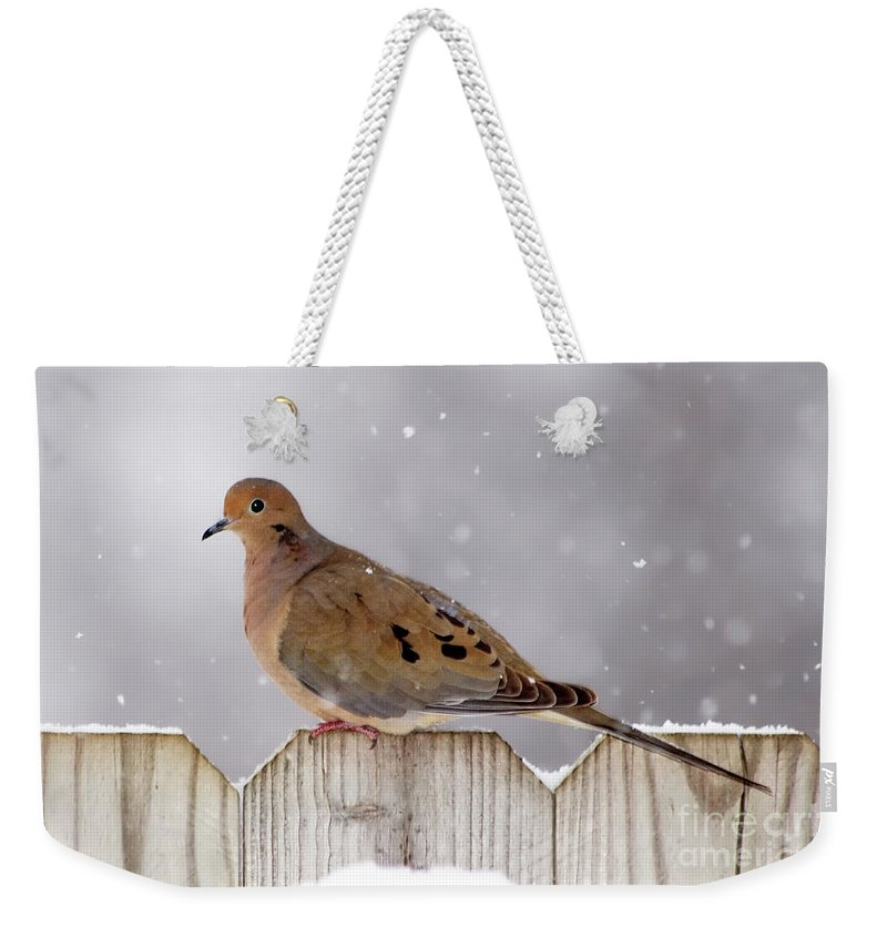 Dove Weekender Tote Bag featuring the photograph Dove In The Snow by Betty LaRue