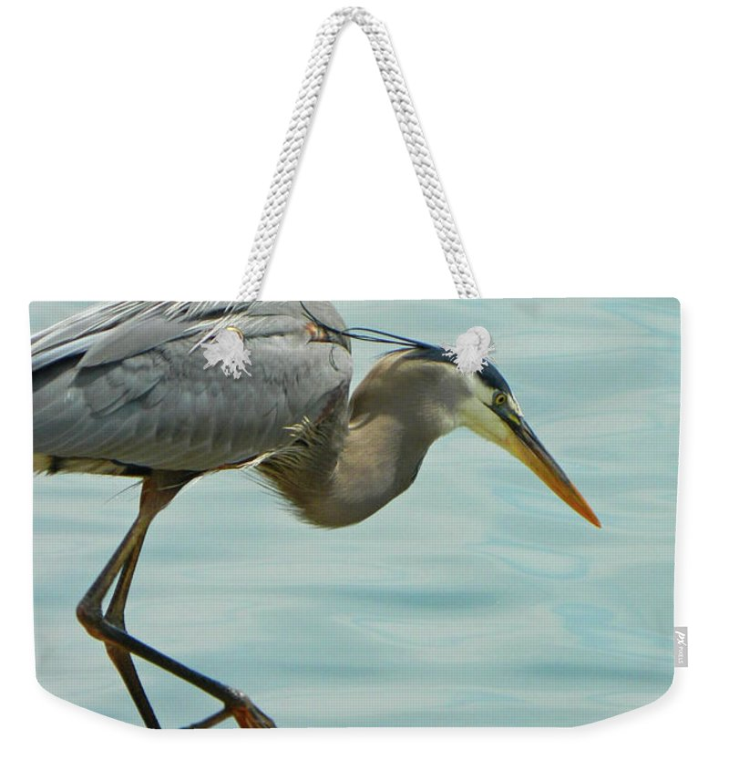 Down The Hatch Weekender Tote Bag featuring the photograph Down The Hatch by Emmy Vickers