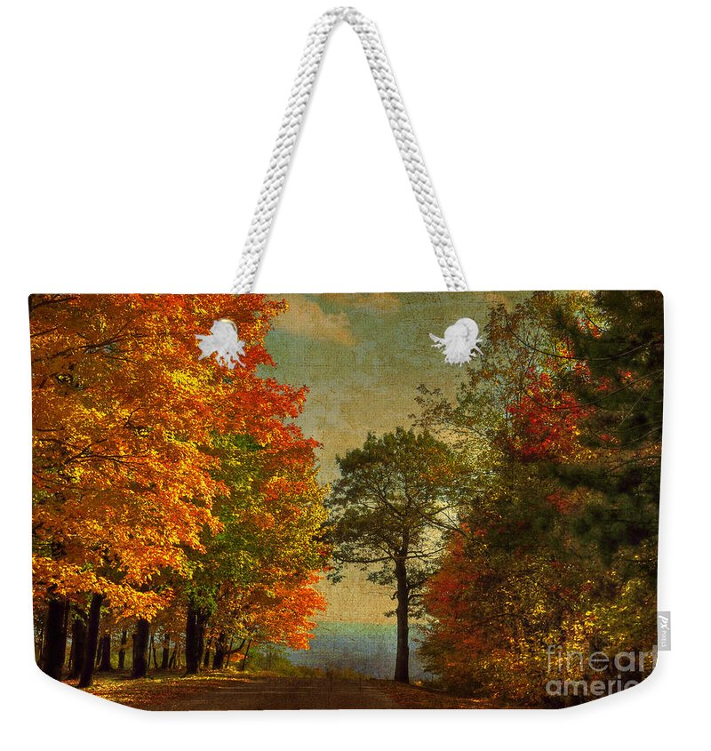 Trees Weekender Tote Bag featuring the photograph Down The Mountain by Lois Bryan