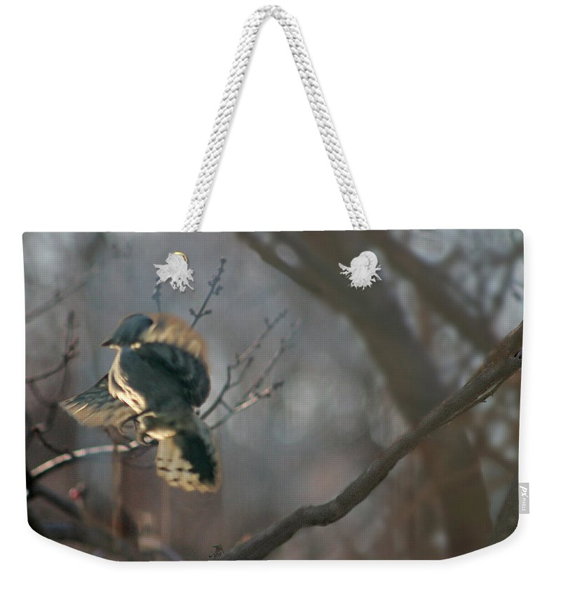 Nature Weekender Tote Bag featuring the photograph Downey Woodpecker by Steve Karol