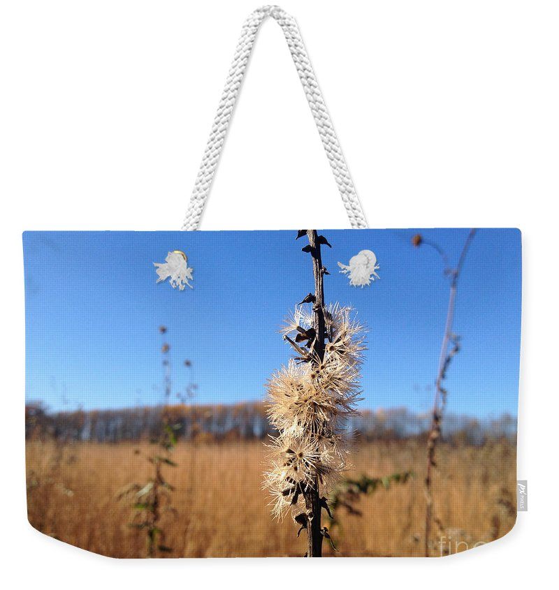 Meadow Weekender Tote Bag featuring the photograph Downtown Meadow Architecture by Clay Cofer