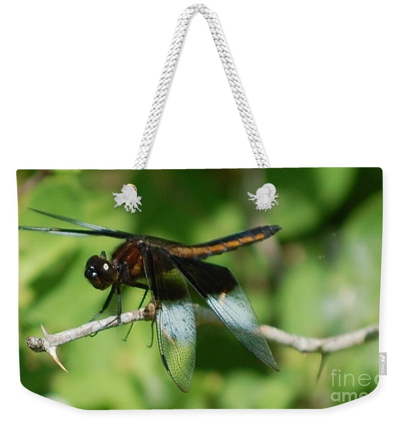 Digitall Photo Weekender Tote Bag featuring the photograph Dragon Fly by David Lane