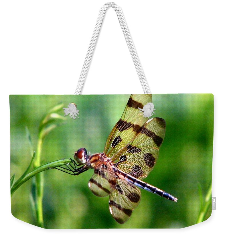 Dragonfly Weekender Tote Bag featuring the photograph Dragonfly 10 by J M Farris Photography