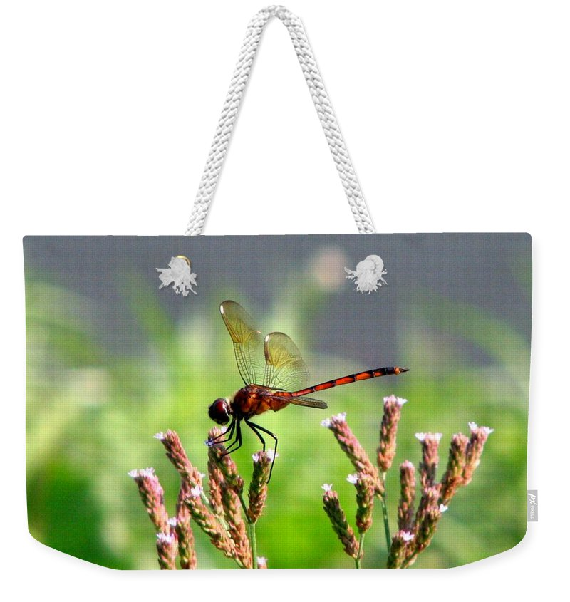 Dragonfly Weekender Tote Bag featuring the photograph Dragonfly 8 by J M Farris Photography