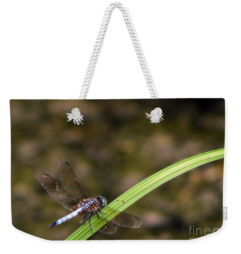 Dragonfly Weekender Tote Bag featuring the photograph Dragonfly by Amanda Barcon