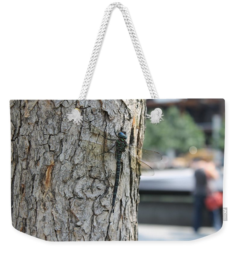Dragonfly Weekender Tote Bag featuring the photograph Dragonfly At Ground Zero by Laura Martin