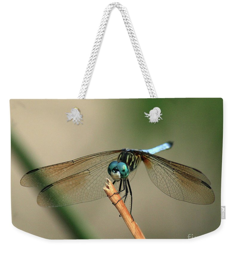 Dragonfly Weekender Tote Bag featuring the photograph Dragonfly by Douglas Stucky