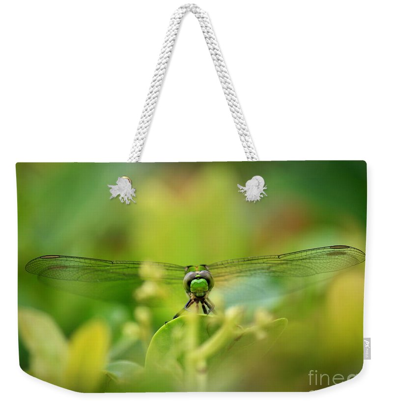 Dragonfly Weekender Tote Bag featuring the photograph Dragonfly Dream In Green by Carol Groenen