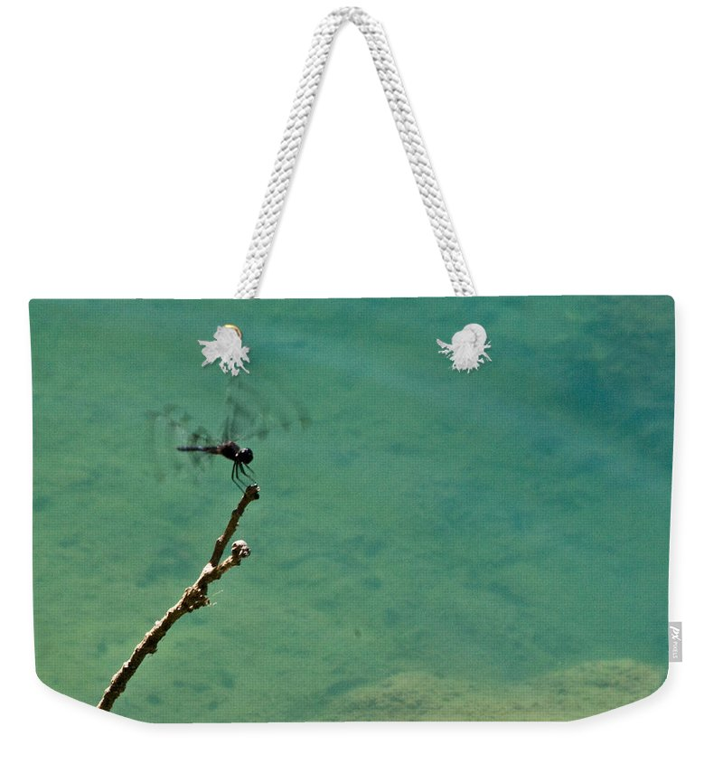 Dragonfly Weekender Tote Bag featuring the photograph Dragonfly Exercising Wings by Douglas Barnett