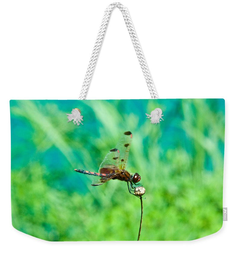 Dragonfly Weekender Tote Bag featuring the photograph Dragonfly Hanging On by Douglas Barnett