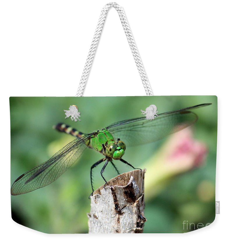 Dragonfly Weekender Tote Bag featuring the photograph Dragonfly In The Flower Garden by Carol Groenen