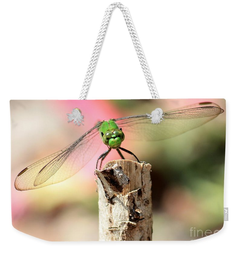 Dragonfly Weekender Tote Bag featuring the photograph Dragonfly In The Petunias by Carol Groenen