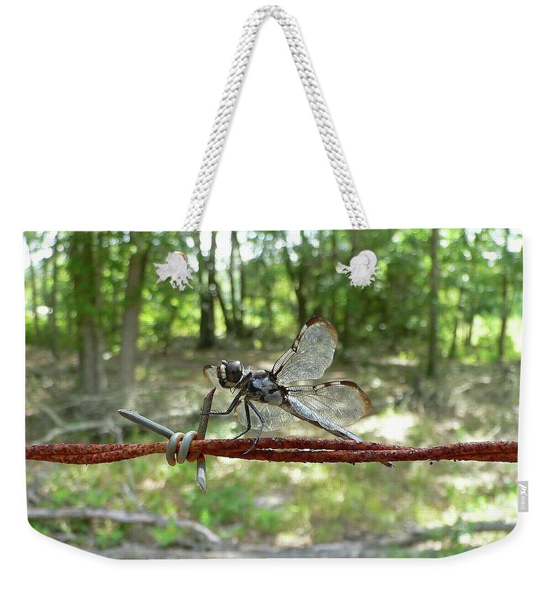 Dragonfly Weekender Tote Bag featuring the photograph Dragonfly On Barbed Wire by Al Powell Photography USA