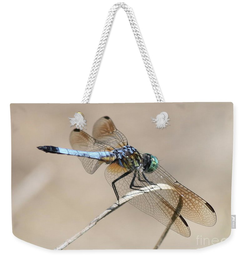 Dragonfly Weekender Tote Bag featuring the photograph Dragonfly On Bent Reed by Carol Groenen