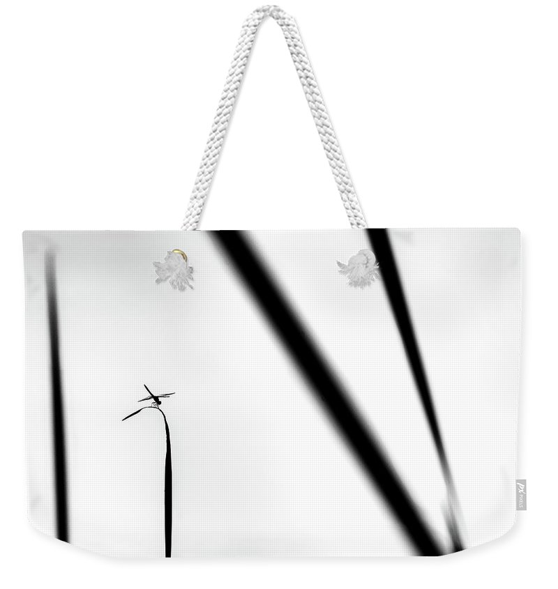 Dragonfly Weekender Tote Bag featuring the photograph Dragonfly On Reed by Steven Ford