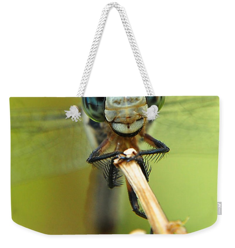 Nature Weekender Tote Bag featuring the photograph Dragonfly by Susan Cliett