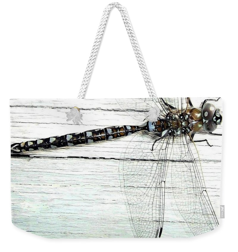 Insect Weekender Tote Bag featuring the photograph Dragonfly by Will Borden