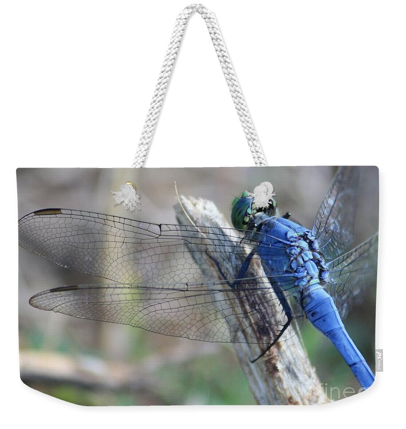 Dragonfly Weekender Tote Bag featuring the photograph Dragonfly Wing Detail by Carol Groenen