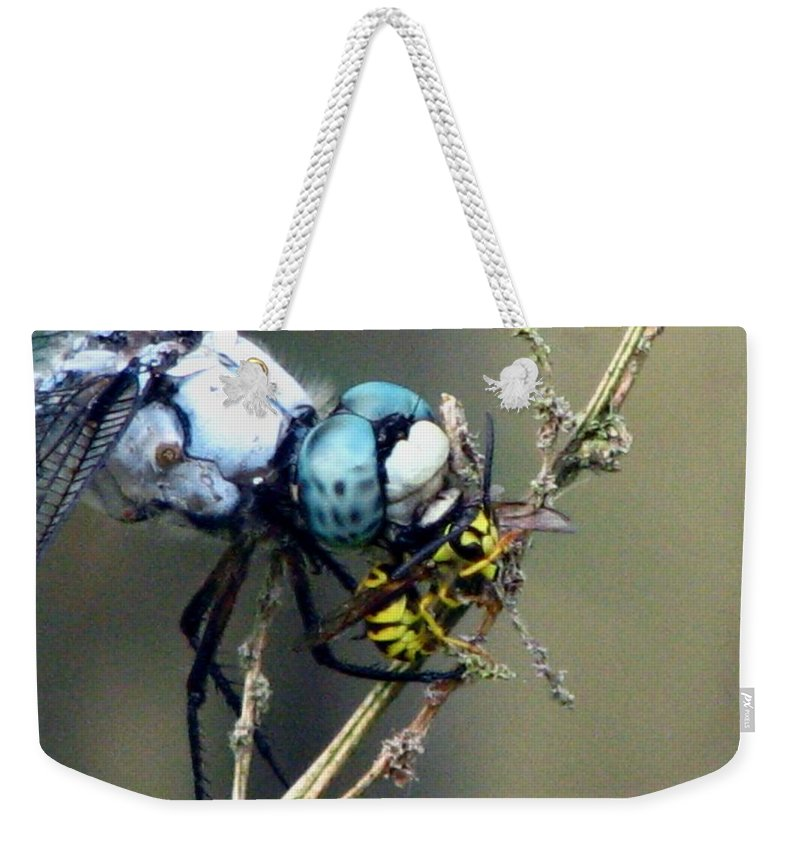 Dragonfly Weekender Tote Bag featuring the photograph Dragonfly With Yellowjacket 4 by J M Farris Photography