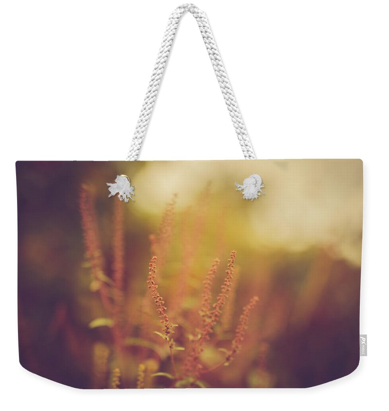 Nature Weekender Tote Bag featuring the photograph Dream Sequence by Shane Holsclaw